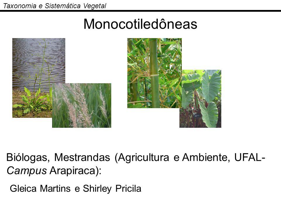 Taxonomia e Sistemática Vegetal Monocotiledôneas Biólogas, Mestrandas (Agricultura e Ambiente, UFAL- Campus Arapiraca): Gleica Martins e Shirley Prici