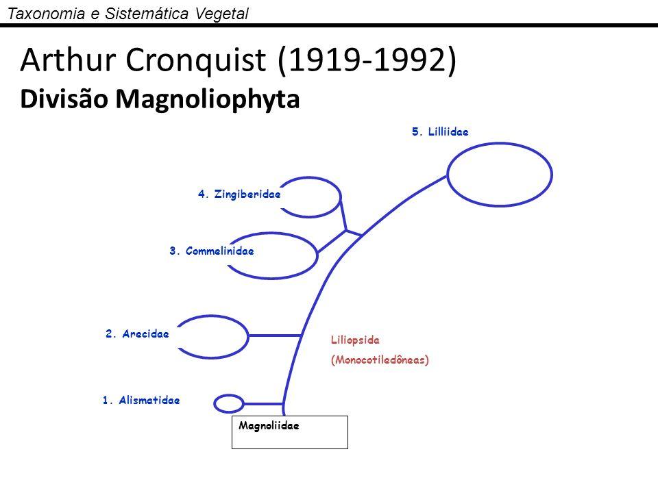 Taxonomia e Sistemática Vegetal 5. Lilliidae 4. Zingiberidae 3. Commelinidae 2. Arecidae 1. Alismatidae Liliopsida (Monocotiledôneas) Magnoliidae Arth