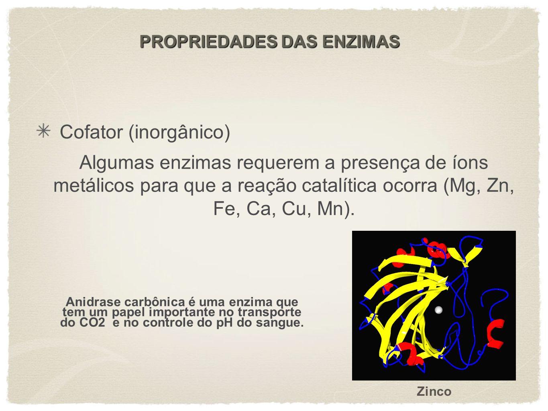 Cofator (inorgânico) Algumas enzimas requerem a presença de íons metálicos para que a reação catalítica ocorra (Mg, Zn, Fe, Ca, Cu, Mn). Anidrase carb