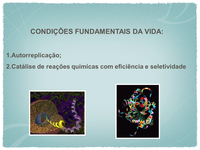 1.Autorreplicação; 2.Catálise de reações químicas com eficiência e seletividade CONDIÇÕES FUNDAMENTAIS DA VIDA:
