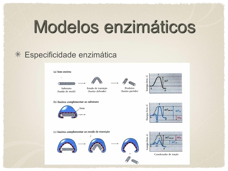 Especificidade enzimática Modelos enzimáticos