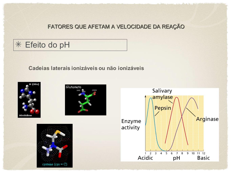 Efeito do pH Cadeias laterais ionizáveis ou não ionizáveis FATORES QUE AFETAM A VELOCIDADE DA REAÇÃO