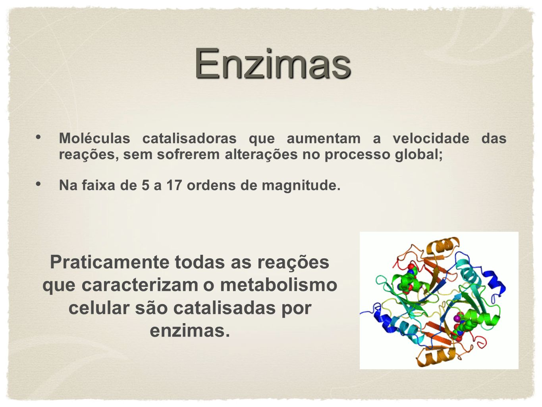 Enzimas Moléculas catalisadoras que aumentam a velocidade das reações, sem sofrerem alterações no processo global; Na faixa de 5 a 17 ordens de magnit