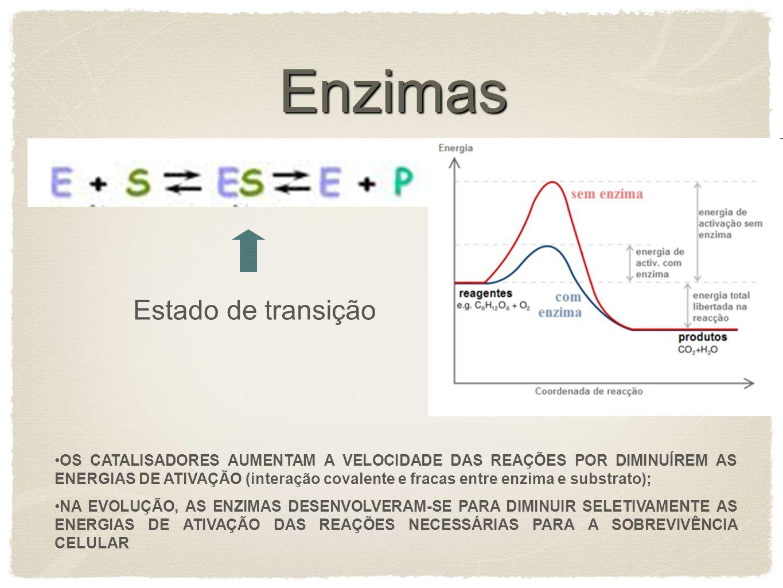 Enzimas OS CATALISADORES AUMENTAM A VELOCIDADE DAS REAÇÕES POR DIMINUÍREM AS ENERGIAS DE ATIVAÇÃO (interação covalente e fracas entre enzima e substra