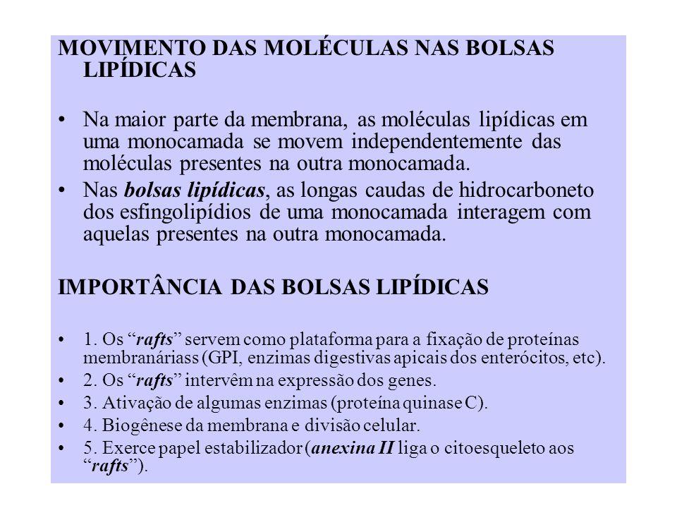 MOVIMENTO DAS MOLÉCULAS NAS BOLSAS LIPÍDICAS Na maior parte da membrana, as moléculas lipídicas em uma monocamada se movem independentemente das moléc