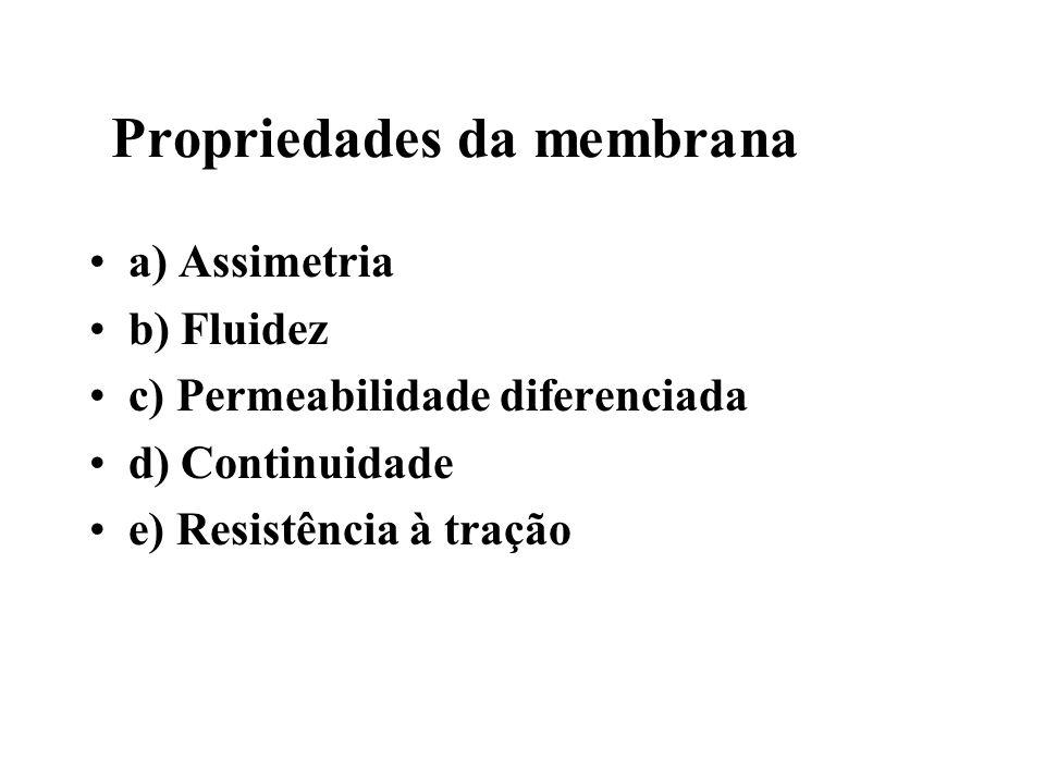 Propriedades da membrana a) Assimetria b) Fluidez c) Permeabilidade diferenciada d) Continuidade e) Resistência à tração