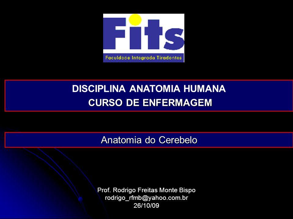 Prof. Rodrigo Freitas Monte Bispo rodrigo_rfmb@yahoo.com.br26/10/09 DISCIPLINA ANATOMIA HUMANA CURSO DE ENFERMAGEM CURSO DE ENFERMAGEM Anatomia do Cer