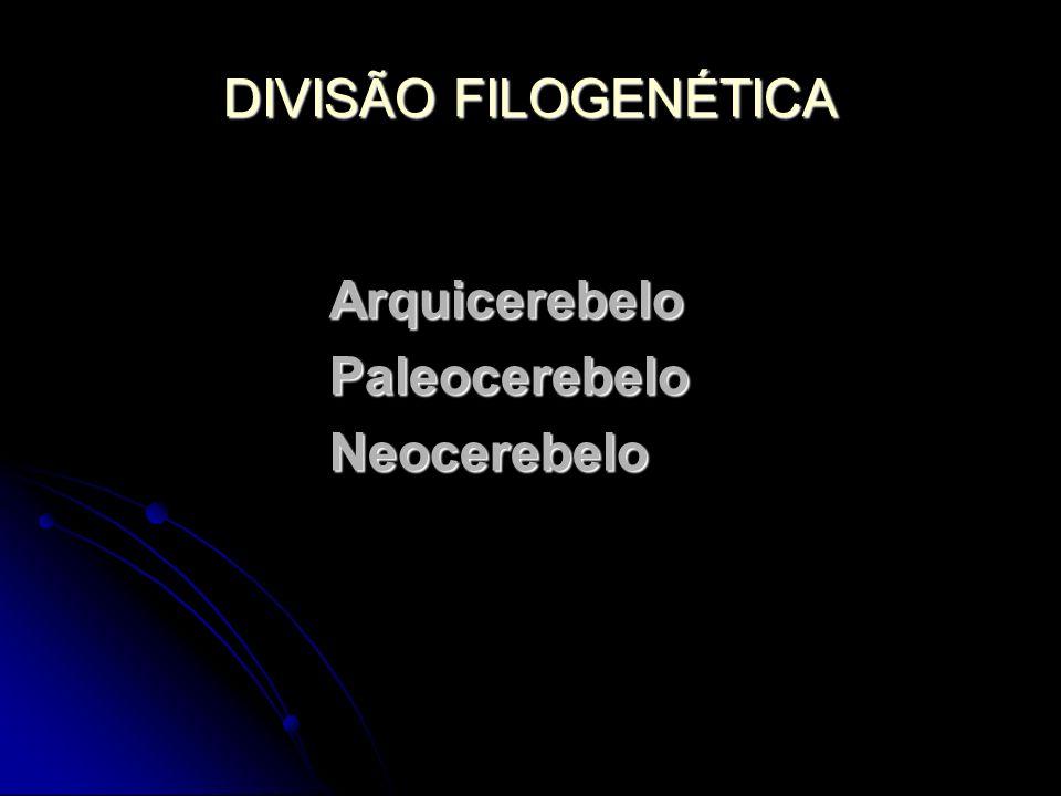 DIVISÃO FILOGENÉTICA ArquicerebeloPaleocerebeloNeocerebelo