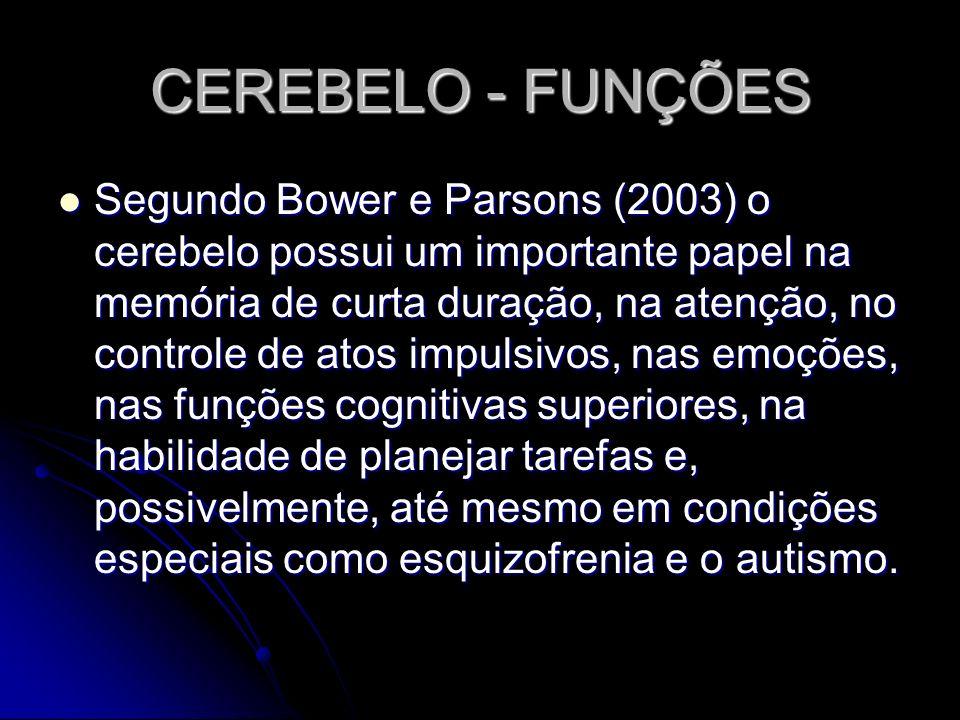 CEREBELO - FUNÇÕES Segundo Bower e Parsons (2003) o cerebelo possui um importante papel na memória de curta duração, na atenção, no controle de atos i