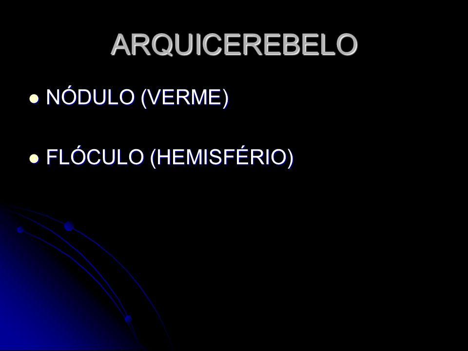 ARQUICEREBELO NÓDULO (VERME) NÓDULO (VERME) FLÓCULO (HEMISFÉRIO) FLÓCULO (HEMISFÉRIO)