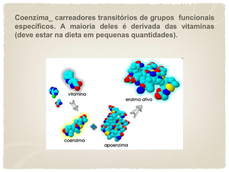 Coenzima_ carreadores transitórios de grupos funcionais específicos. A maioria deles é derivada das vitaminas (deve estar na dieta em pequenas quantid