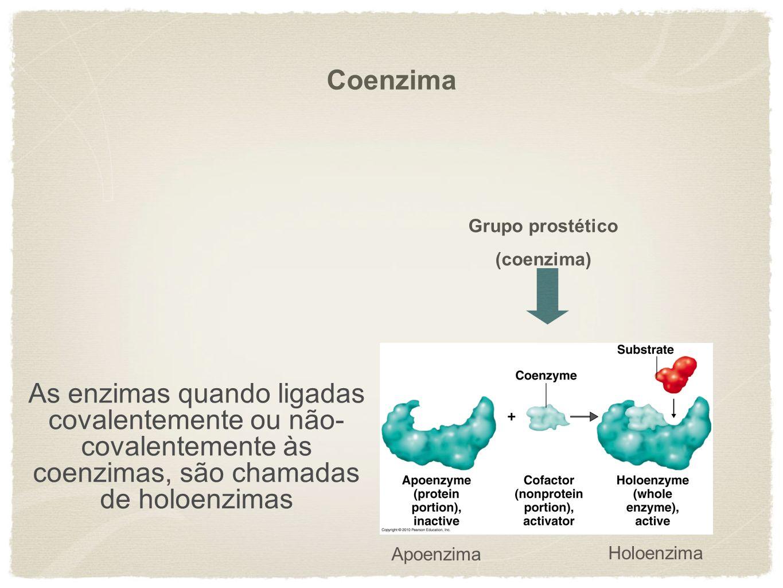 Apoenzima Holoenzima As enzimas quando ligadas covalentemente ou não- covalentemente às coenzimas, são chamadas de holoenzimas Grupo prostético (coenz