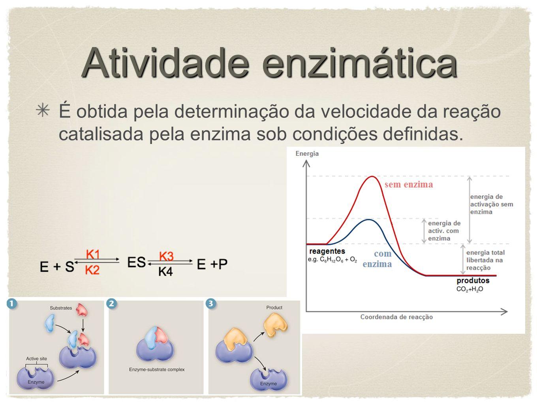 Atividade enzimática É obtida pela determinação da velocidade da reação catalisada pela enzima sob condições definidas.