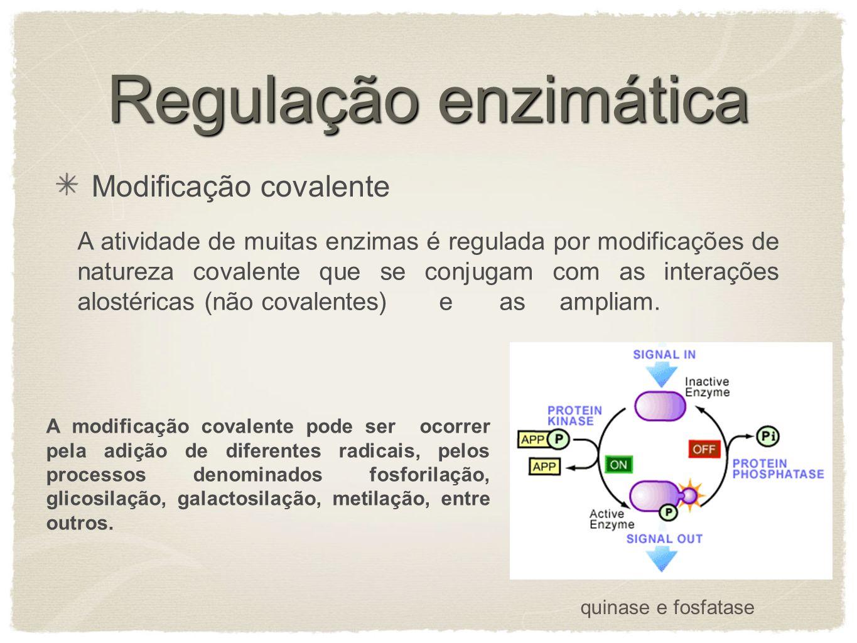 Regulação enzimática Modificação covalente A atividade de muitas enzimas é regulada por modificações de natureza covalente que se conjugam com as inte