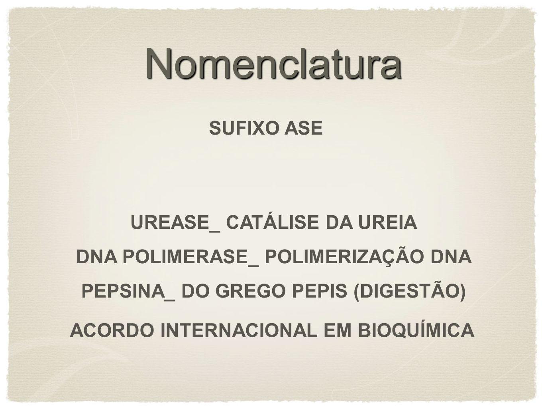 Nomenclatura SUFIXO ASE UREASE_ CATÁLISE DA UREIA DNA POLIMERASE_ POLIMERIZAÇÃO DNA PEPSINA_ DO GREGO PEPIS (DIGESTÃO) ACORDO INTERNACIONAL EM BIOQUÍM