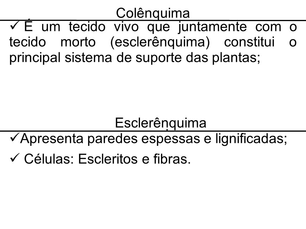 Colênquima É um tecido vivo que juntamente com o tecido morto (esclerênquima) constitui o principal sistema de suporte das plantas; Esclerânquima Apre