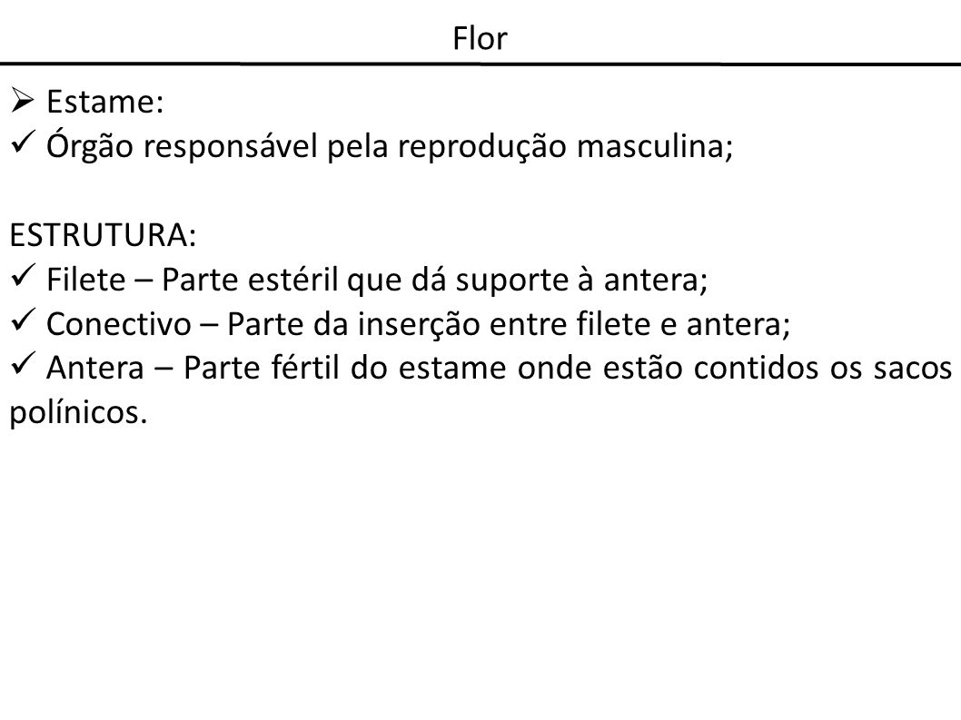 Flor Estame: Órgão responsável pela reprodução masculina; ESTRUTURA: Filete – Parte estéril que dá suporte à antera; Conectivo – Parte da inserção ent