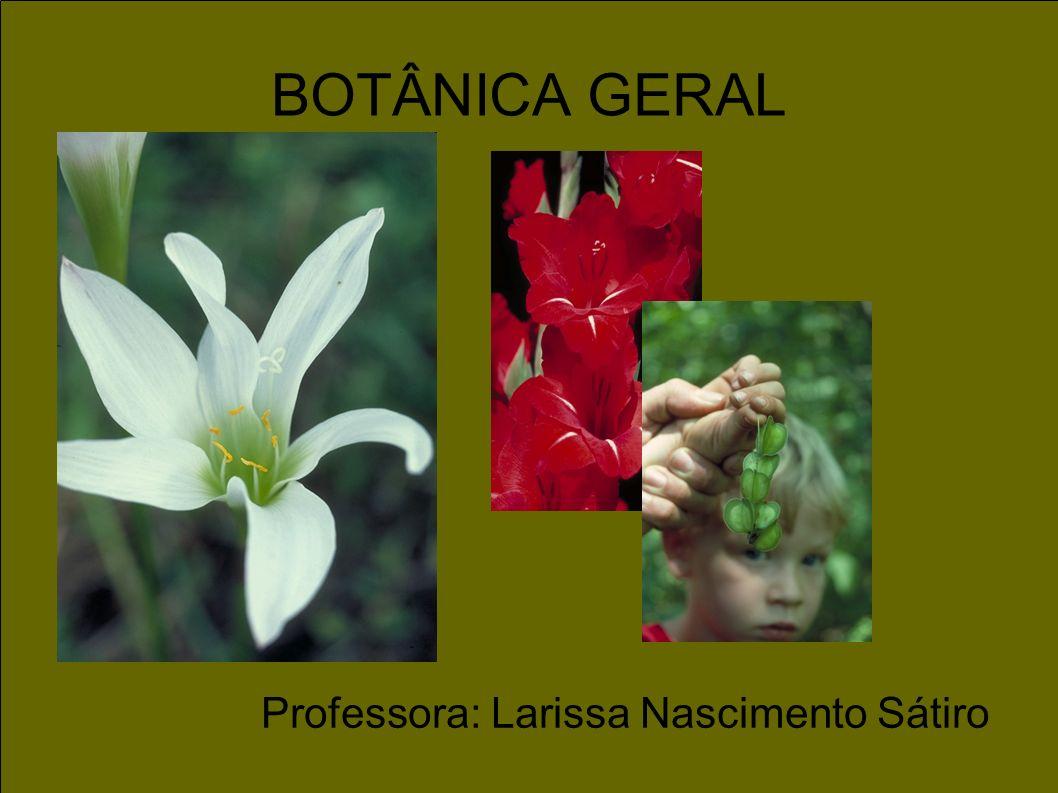 BOTÂNICA GERAL Professora: Larissa Nascimento Sátiro