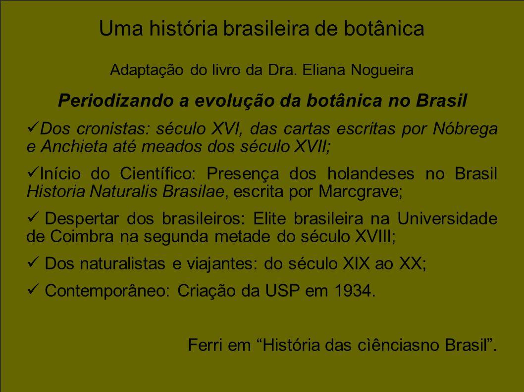 Uma história brasileira de botânica Adaptação do livro da Dra. Eliana Nogueira Periodizando a evolução da botânica no Brasil Dos cronistas: século XVI