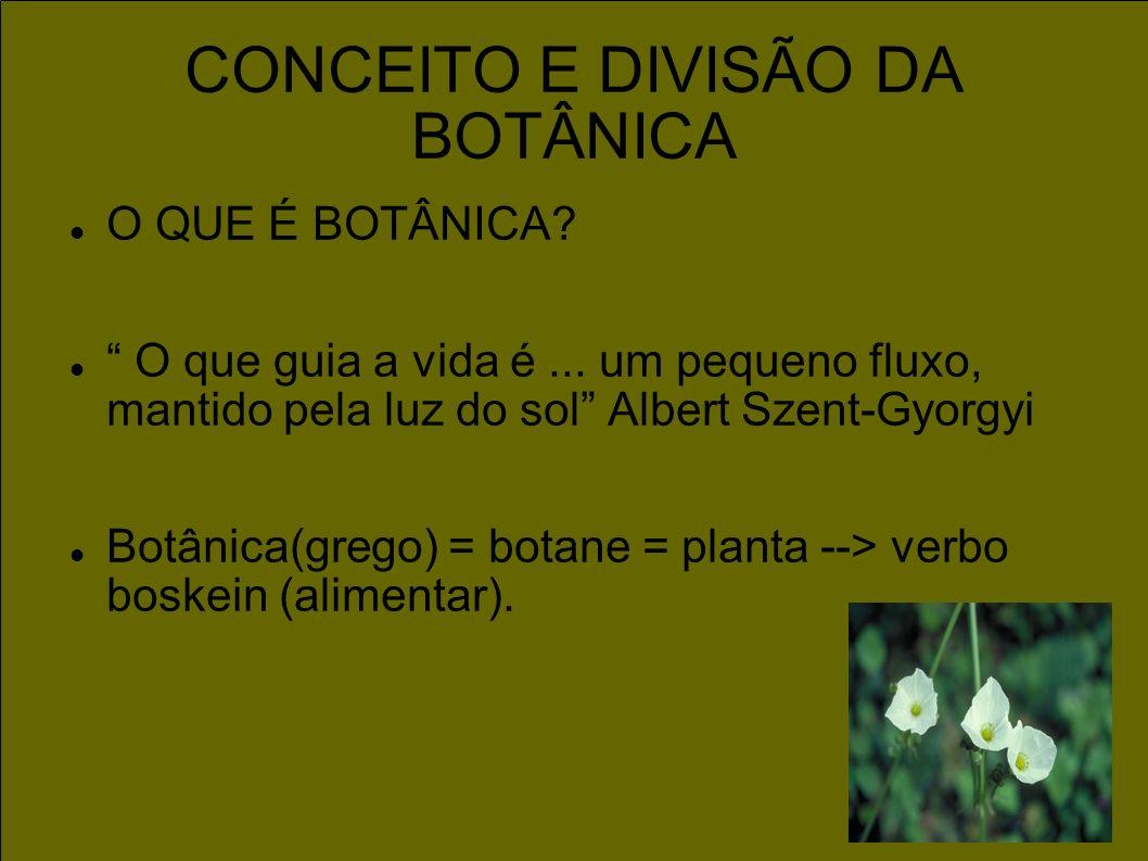 CONCEITO E DIVISÃO DA BOTÂNICA O QUE É BOTÂNICA? O que guia a vida é... um pequeno fluxo, mantido pela luz do sol Albert Szent-Gyorgyi Botânica(grego)