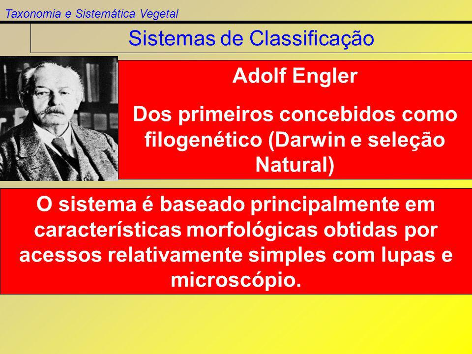 Taxonomia e Sistemática Vegetal Sistemas de Classificação Adolf Engler Dos primeiros concebidos como filogenético (Darwin e seleção Natural) O sistema