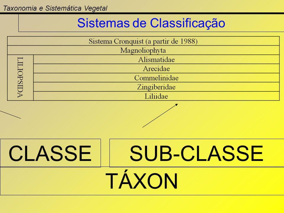 Taxonomia e Sistemática Vegetal Sistemas de Classificação TÁXON CLASSESUB-CLASSE