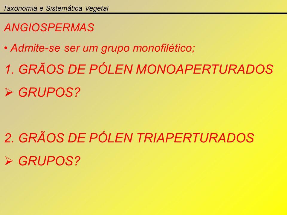 Taxonomia e Sistemática Vegetal ANGIOSPERMAS Admite-se ser um grupo monofilético; 1. GRÃOS DE PÓLEN MONOAPERTURADOS GRUPOS? 2. GRÃOS DE PÓLEN TRIAPERT