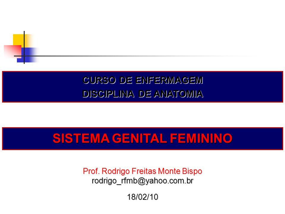 Prof. Rodrigo Freitas Monte Bispo rodrigo_rfmb@yahoo.com.br18/02/10 CURSO DE ENFERMAGEM DISCIPLINA DE ANATOMIA SISTEMA GENITAL FEMININO