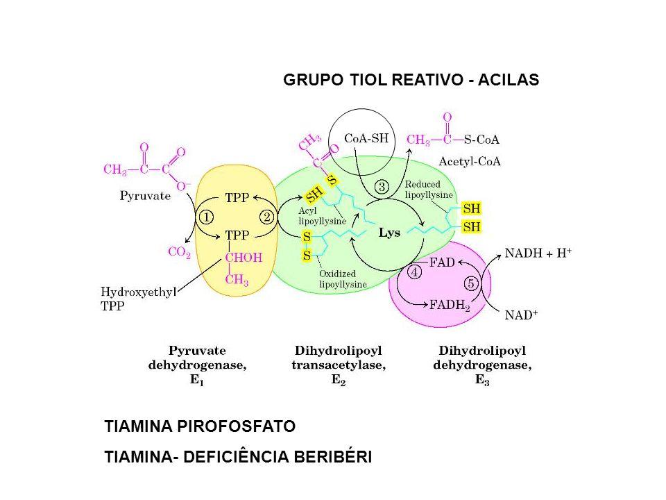 GRUPO TIOL REATIVO - ACILAS TIAMINA PIROFOSFATO TIAMINA- DEFICIÊNCIA BERIBÉRI