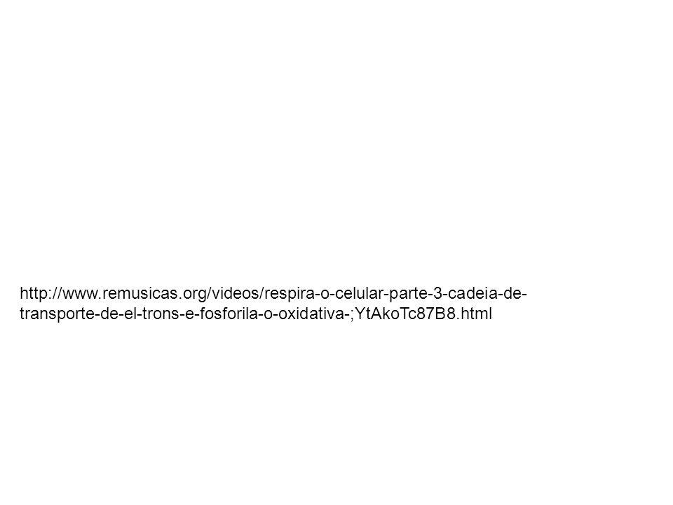 http://www.remusicas.org/videos/respira-o-celular-parte-3-cadeia-de- transporte-de-el-trons-e-fosforila-o-oxidativa-;YtAkoTc87B8.html