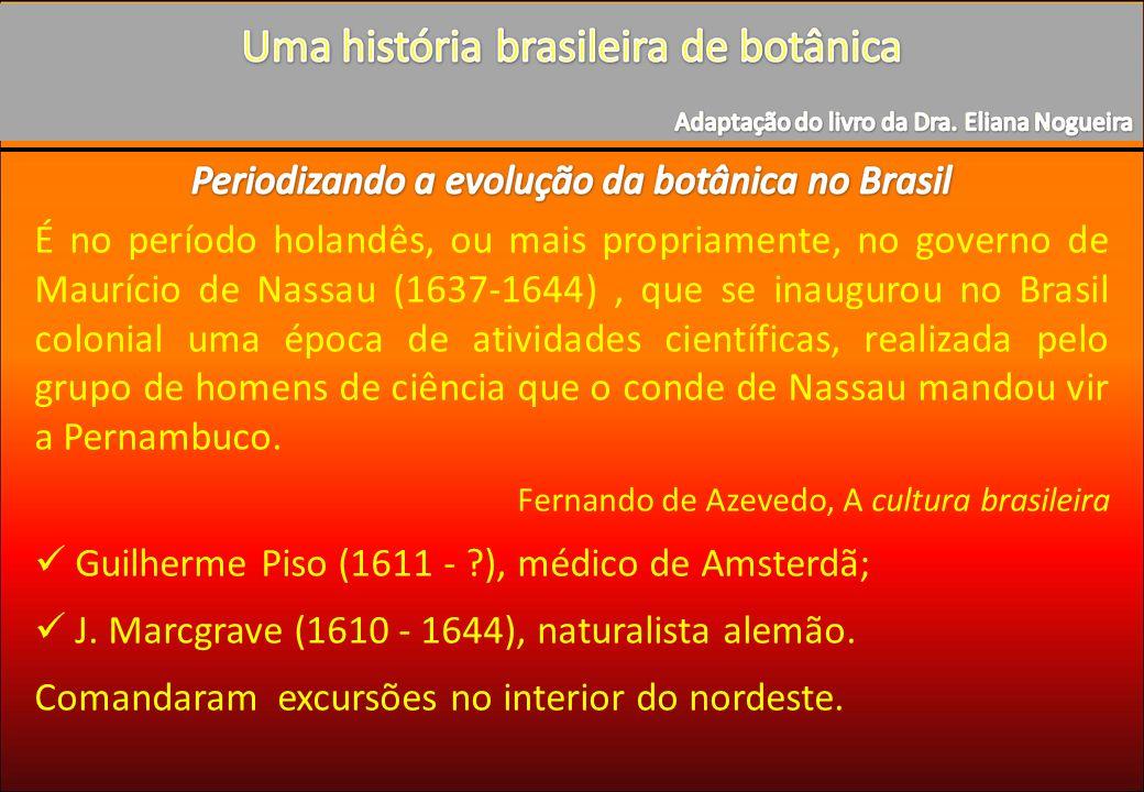 É no período holandês, ou mais propriamente, no governo de Maurício de Nassau (1637-1644), que se inaugurou no Brasil colonial uma época de atividades