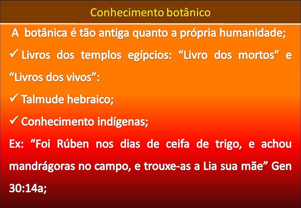 Introdução à Taxonomia e Sistemática Vegetal Unidades Sistemáticas Gênero: O primeiro de duas palavras que constituem um binômio.