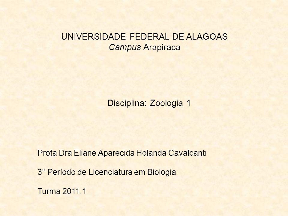 UNIVERSIDADE FEDERAL DE ALAGOAS Campus Arapiraca Disciplina: Zoologia 1 Profa Dra Eliane Aparecida Holanda Cavalcanti 3° Período de Licenciatura em Bi