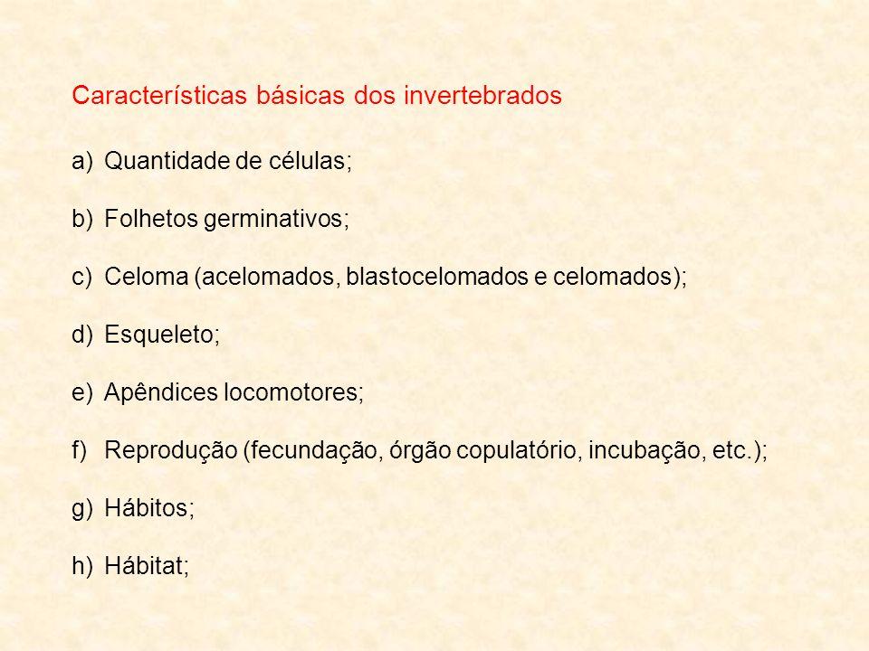 Características básicas dos invertebrados a)Quantidade de células; b)Folhetos germinativos; c)Celoma (acelomados, blastocelomados e celomados); d)Esqu