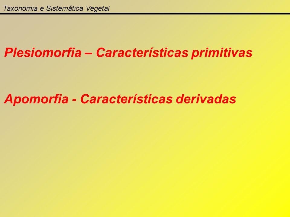 Taxonomia e Sistemática Vegetal Plesiomorfia – Características primitivas Apomorfia - Características derivadas