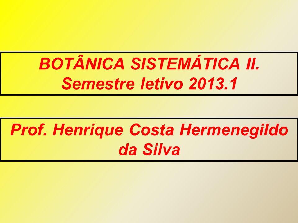 Prof. Henrique Costa Hermenegildo da Silva BOTÂNICA SISTEMÁTICA II. Semestre letivo 2013.1