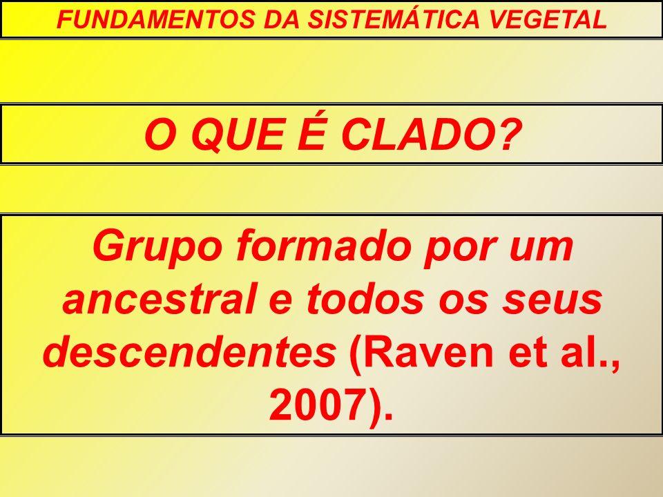 O QUE É CLADO? FUNDAMENTOS DA SISTEMÁTICA VEGETAL Grupo formado por um ancestral e todos os seus descendentes (Raven et al., 2007).