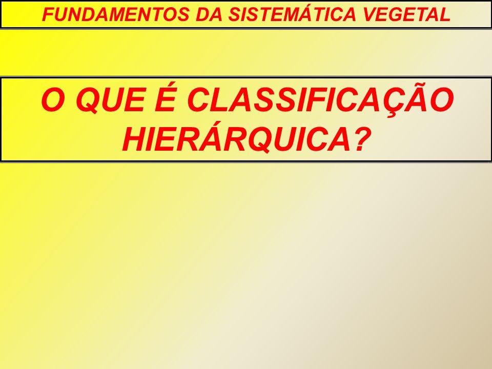 O QUE É CLASSIFICAÇÃO HIERÁRQUICA? FUNDAMENTOS DA SISTEMÁTICA VEGETAL