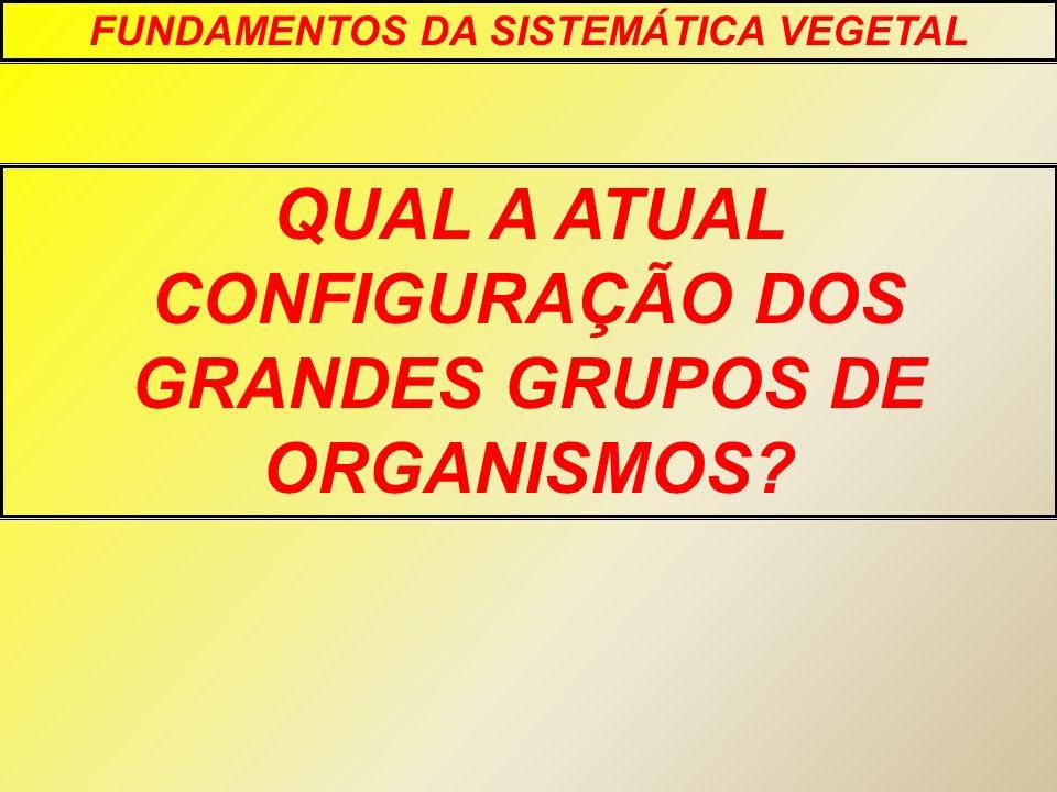 QUAL A ATUAL CONFIGURAÇÃO DOS GRANDES GRUPOS DE ORGANISMOS? FUNDAMENTOS DA SISTEMÁTICA VEGETAL