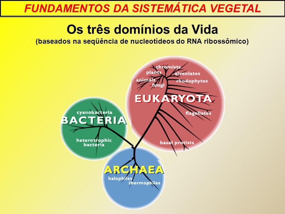Os três domínios da Vida (baseados na seqüência de nucleotídeos do RNA ribossômico) FUNDAMENTOS DA SISTEMÁTICA VEGETAL