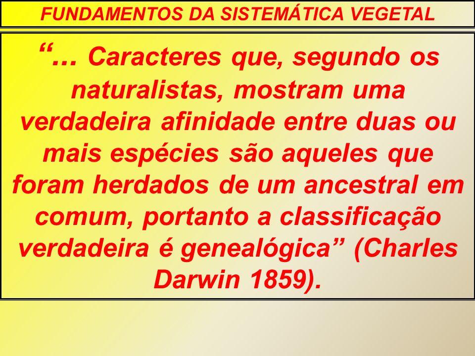 O sistema geral de referencia da diversidade biológica e o sistema lineano NOMES; OBJETOS; CLASSES DE OBJETO.