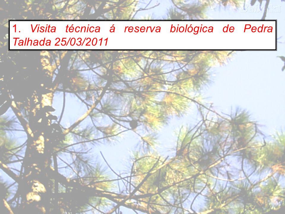 1. Visita técnica á reserva biológica de Pedra Talhada 25/03/2011