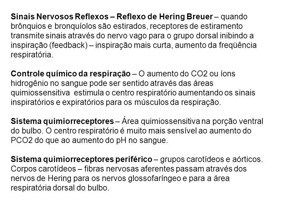 Sinais Nervosos Reflexos – Reflexo de Hering Breuer – quando brônquios e bronquíolos são estirados, receptores de estiramento transmite sinais através