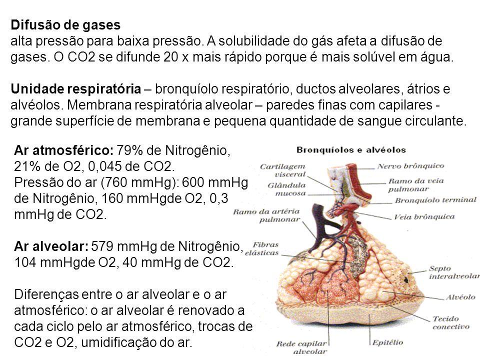Difusão de gases alta pressão para baixa pressão. A solubilidade do gás afeta a difusão de gases. O CO2 se difunde 20 x mais rápido porque é mais solú