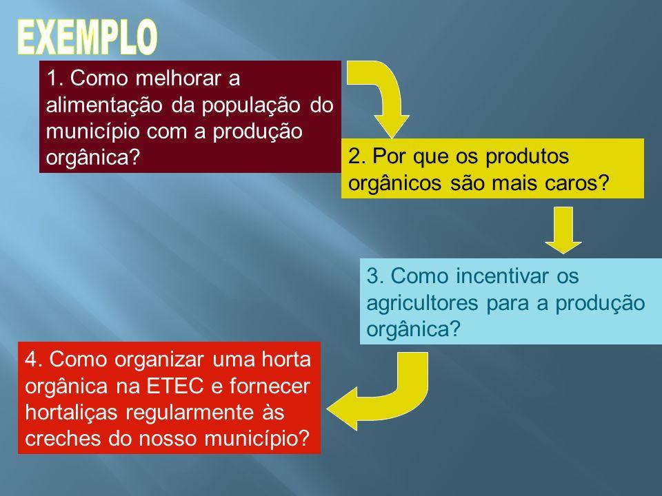 1. Como melhorar a alimentação da população do município com a produção orgânica? 2. Por que os produtos orgânicos são mais caros? 4. Como organizar u