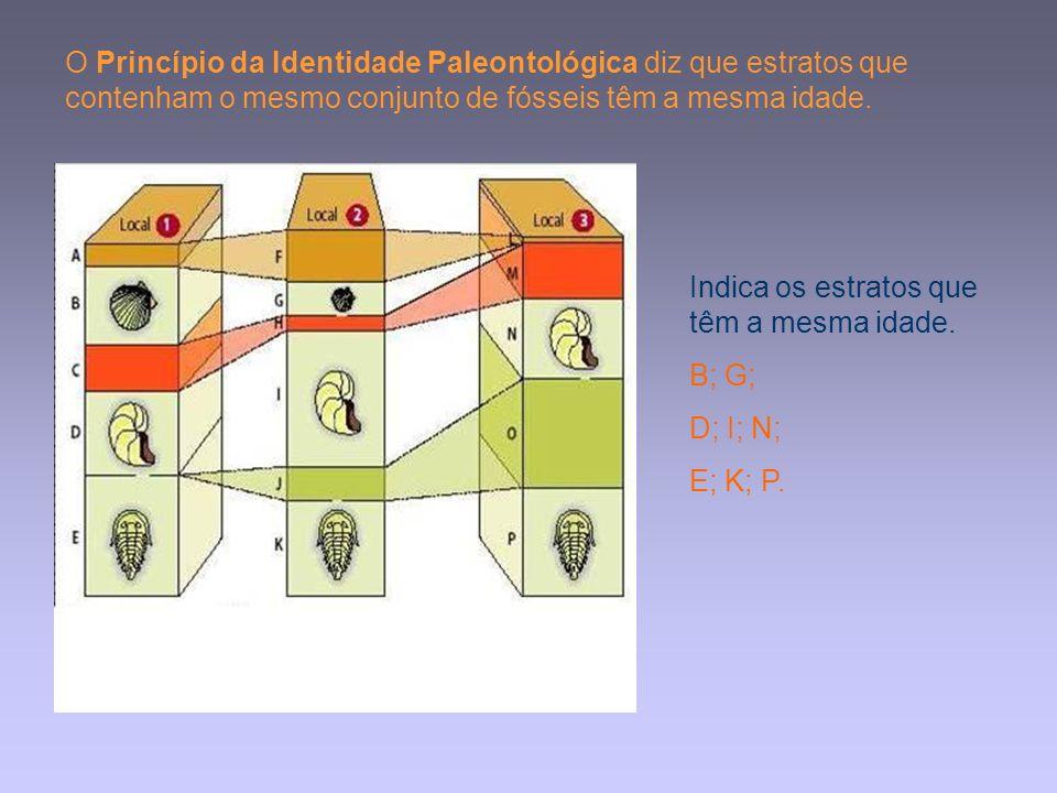 O Princípio da Identidade Paleontológica diz que estratos que contenham o mesmo conjunto de fósseis têm a mesma idade. Indica os estratos que têm a me