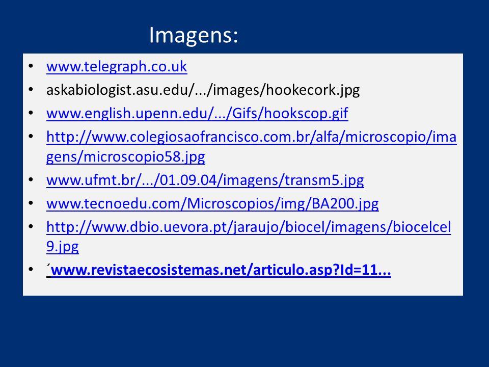 Imagens: www.telegraph.co.uk askabiologist.asu.edu/.../images/hookecork.jpg www.english.upenn.edu/.../Gifs/hookscop.gif http://www.colegiosaofrancisco