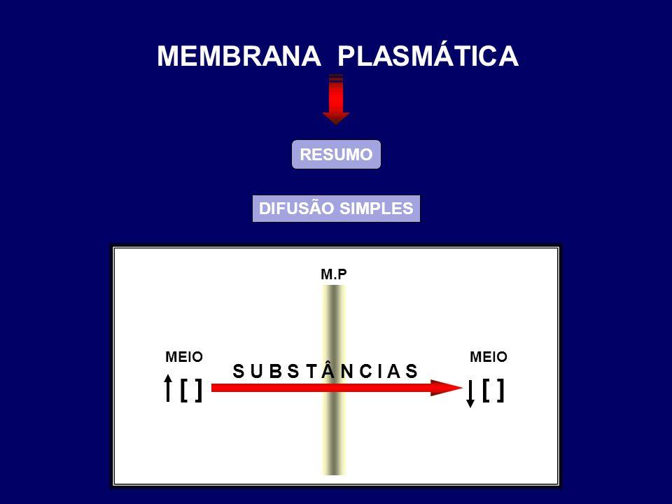 RESUMO DIFUSÃO SIMPLES M.P S U B S T Â N C I A S MEIO ] [ ] [ MEMBRANA PLASMÁTICA