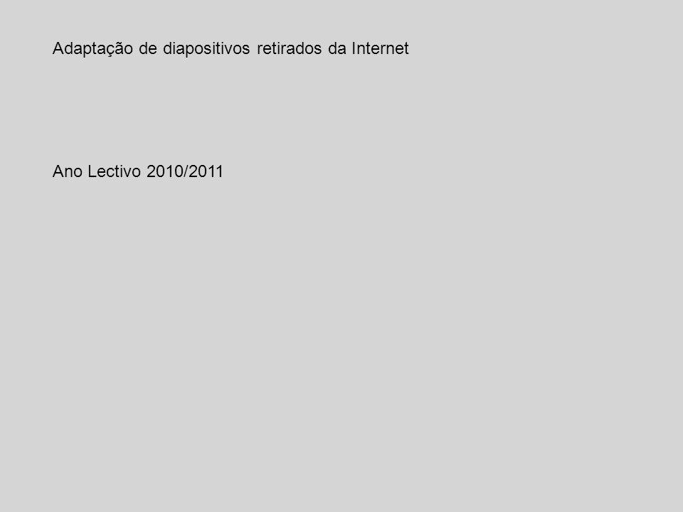 Adaptação de diapositivos retirados da Internet Ano Lectivo 2010/2011