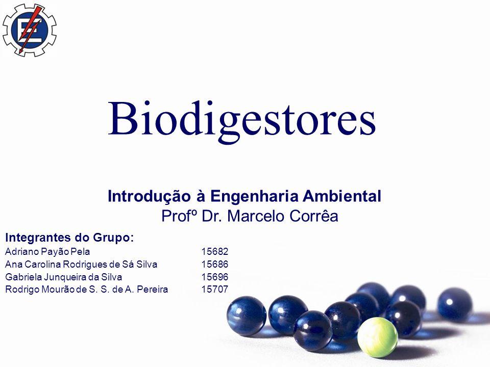 Biodigestores Introdução à Engenharia Ambiental Profº Dr.